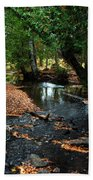 Silver River Channel In Autumn Beach Towel