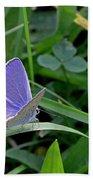 Silver Studded Blue Butterfly Beach Towel