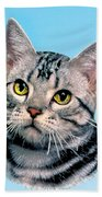 Silver Tabby Kitten Original Painting For Sale Beach Towel