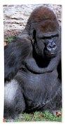 Silverback Western Lowland Gorilla Beach Towel