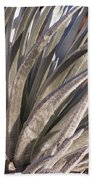Silversword Detail Beach Towel