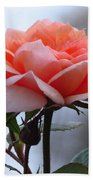 Simply Rose  Beach Towel
