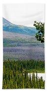 Simpson Peak At Swan Lake-yt Beach Towel