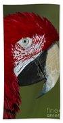 Sinbad... Beach Towel