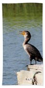 Singing Bird Beach Towel