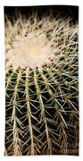 Single Cactus Ball Beach Towel