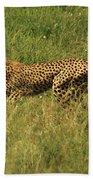 Single Cheetah Running Through The Grass Beach Towel