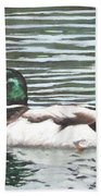 Single Mallard Duck In Water Beach Towel
