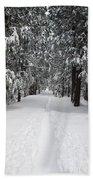 Single Track Cross Country Skiing Trail Yosemite National Park Beach Towel
