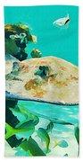 Singray City Cayman Islands Four Beach Towel