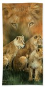 Sisterhood Of The Lions Beach Towel