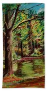 Sisters At Wason Pond Beach Towel by Sean Connolly