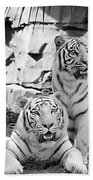 Sisters Black And White Beach Towel