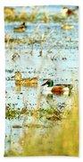 Sitting Ducks Beach Towel