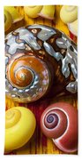 Six Snails Shells Beach Towel