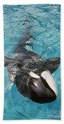 Skana Orca Vancouver Aquarium Pat Hathaway Photo1974 Beach Towel
