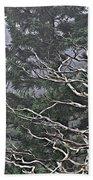 Skeletal Treescape Beach Towel