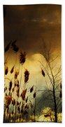 Autumn Lights Sky Colors  Beach Towel