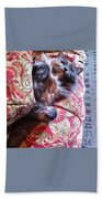 Sleeping In Today Beach Towel by Katie Cupcakes