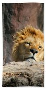 Sleepy Lion Beach Towel