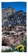 Slide Rock Canyon Beach Towel