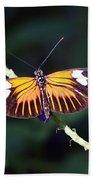 Small Postman Butterfly Beach Towel