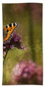 Small Tortoiseshell Butterfly Beach Towel
