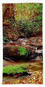 Small Waterfall And Stream 2 Beach Towel