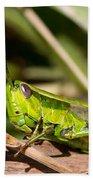 Smaragd-green Grasshopper Beach Towel