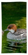 Smew With Ducklings Beach Towel