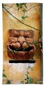 Smiling Cat Mail Box Beach Towel