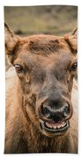 Smiling Elk Beach Towel