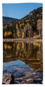 Smith And Morehouse Reflections Beach Towel