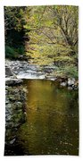 Smoky Mountian River Beach Towel