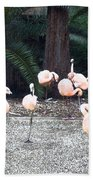 Smudgestick Flamingos Beach Towel