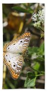 Snack For A White Peacock Butterfly Beach Towel