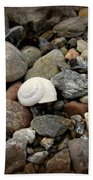 Snail Among The Rocks Beach Towel