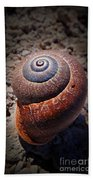 Snail Beauty Beach Towel