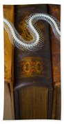 Snake And Antique Books Beach Towel