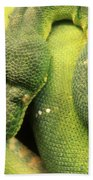 Snake In Green Dress Beach Towel