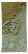 Snake In Ruins Beach Towel
