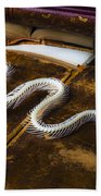 Snake Skeleton And Old Books Beach Towel