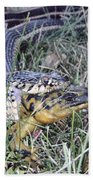 Snake With Legs Beach Towel