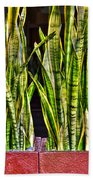 Snakes In A Box Beach Towel