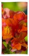 Snapdragon Flower Blurred Background Beach Towel