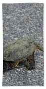 Snapping Turtle 3 Beach Towel