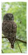 Snooze Time - Owl Beach Towel