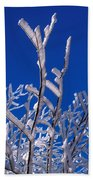 Snow And Ice Coated Branches Beach Towel