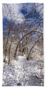 Snow Arches Beach Towel