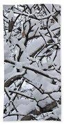 Snow Branches 2-1-15 Beach Towel